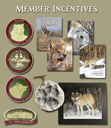 2015 member incentives